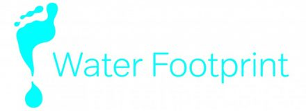© Parkin Architects Ltd. | What is Your Water Footprint?